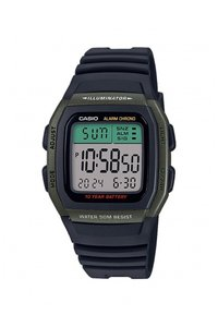 Picture: CASIO W-96H-3AVEF